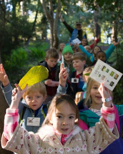 WildCare Nature Camp. Photo by Tory Russell