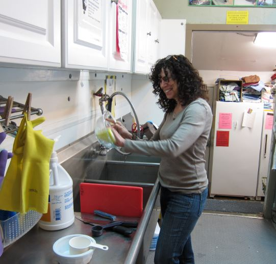 A volunteer washes dishes. Photo by Alison Hermance