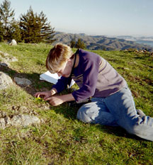 Studying plants. Photo from WildCare archives