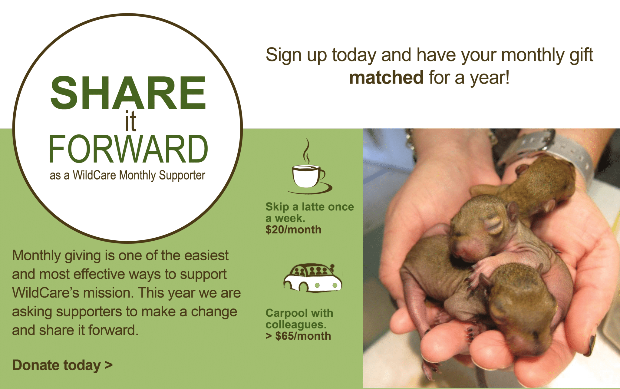 Share it Forward! Become a Monthly Donor today!