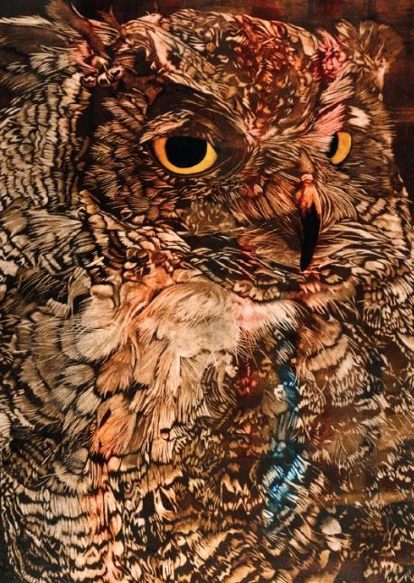 Great Horned Owl. Watercolor by Mary Blake
