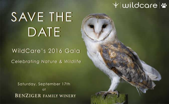 Save the Date! September 17, 2016
