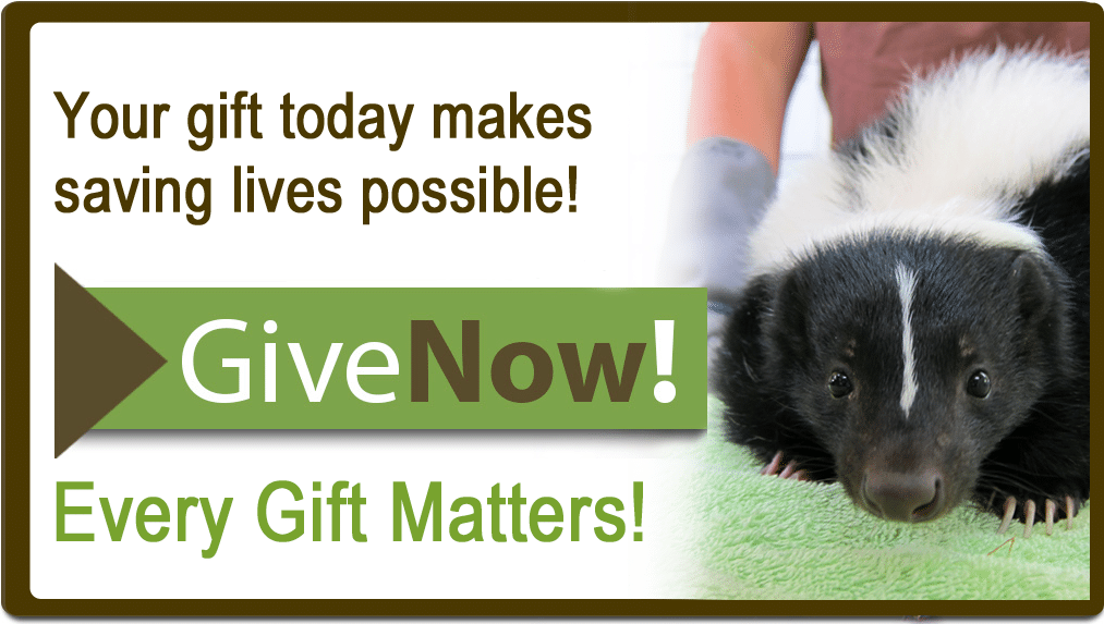 Give Now! Every gift matters!