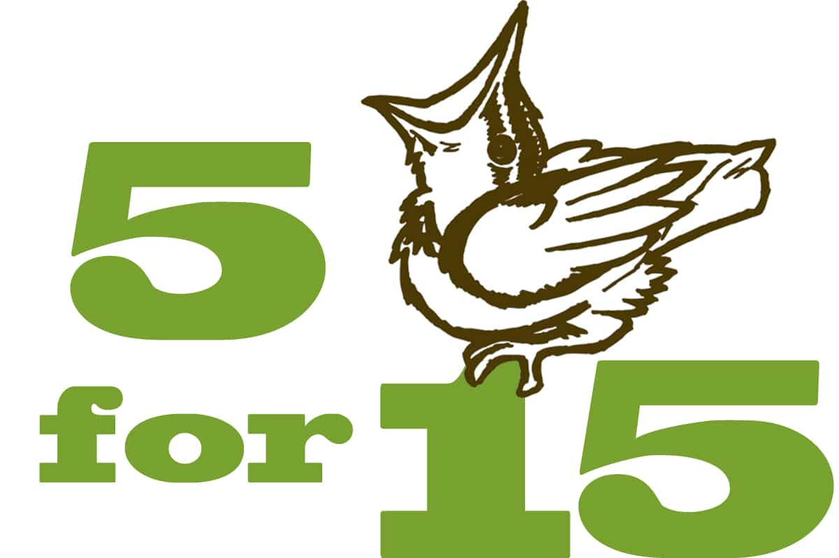 5 for 15 logo. Drawing by David Latour